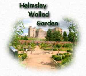 helmsley-walled-garden3