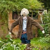 wurzel scarecrow